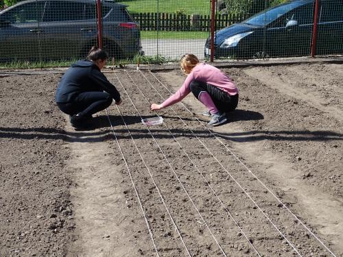 Práce na zahradě 8.ročník