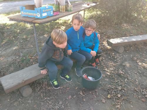 Škola v přírodě - Chaloupky